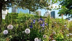 Opinión del parque, la ciudad de Chicago en fondo imágenes de archivo libres de regalías