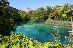 Opinión del parque nacional/del lago de Plitvice Imágenes de archivo libres de regalías