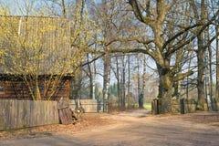 Opinión del patio trasero de la primavera del hogar de madera ruso tradicional con una cerca de madera, los abedules y las pajare Fotos de archivo libres de regalías