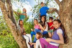 Opinión del primer de adolescencias en el árbol con los móviles Imágenes de archivo libres de regalías
