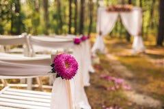 Opinión del primer de elementos florales hermosos Foto de archivo libre de regalías
