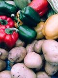 Opinión del primer de la patata fresca y de la pimienta dulce Fotografía de archivo libre de regalías