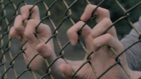Opinión del primer de las manos del hombre joven que sacuden la malla metálica en el área cercada Hombre desamparado que sacude u metrajes
