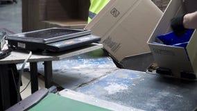 Opinión del primer de las manos de un trabajador de la fabricación que pone productos llenos en cajas de cartón, antes de la expo metrajes
