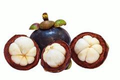 Opinión del primer de los mangostanes de la fruta tropical aislados en el fondo blanco Fotografía de archivo libre de regalías