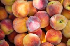 Opinión del primer de melocotones orgánicos frescos Peaches Background imagenes de archivo