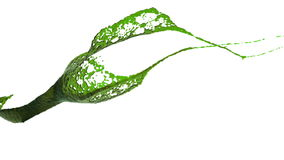 Opinión del primer de salpicar del color verde Aceite líquido libre illustration