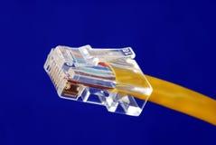 Opinión del primer del cable amarillo de Ethernet (RJ45) Fotografía de archivo