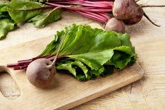 Opinión del primer del cardo, de hojas y de remolachas en la sopa en tabla de cortar Imagen de archivo