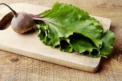 Opinión del primer del cardo, de hojas y de remolachas en la sopa en tabla de cortar Imagen de archivo libre de regalías