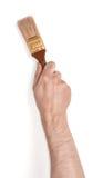 Opinión del primer del man& x27; mano de s con la brocha, aislada en el fondo blanco Imagen de archivo