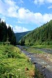 Opinión del río de las montañas de Carpaty Fotos de archivo