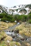 Opinión del río de las montañas de Carpaty Fotos de archivo libres de regalías