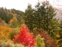 Opinión del valle de la montaña del G/M imagen de archivo libre de regalías