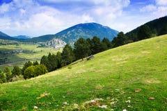 Opinión del verano del prado de la montaña Fotografía de archivo