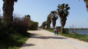 Opinión del walkroad de la playa en Israel Foto de archivo
