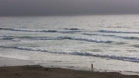 Opinión distante la mujer en la playa de California septentrional almacen de video