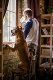 Opinión el hombre joven que hace una pausa la ventana en una compañía de su perro Imágenes de archivo libres de regalías
