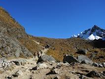 Opinión el Salkantay Inca Trail, Perú Fotos de archivo