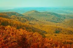 Opinión en montaña, paisaje del bosque del otoño del bosque foto de archivo libre de regalías