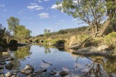 Opinión escénica del paisaje del campo de una corriente del agua dulce Foto de archivo libre de regalías