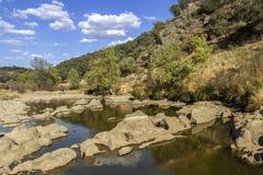 Opinión escénica del paisaje del campo de una corriente del agua dulce Imágenes de archivo libres de regalías