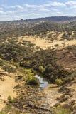Opinión escénica del paisaje del campo de una corriente del agua dulce Fotos de archivo
