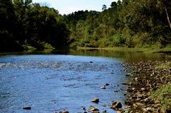 Opinión escénica el río que fluye y Rocky Bank In The Forest de A foto de archivo