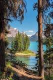 Opinión escénica sobre la isla del alcohol de la pista de senderismo en el lago Maligne, Jasper National Park, Alberta, Canadá Fotografía de archivo
