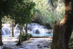 Opinión escénica sobre las cascadas y la piscina azul natural de las cascadas idílicas de Kuang Si en selva imagenes de archivo