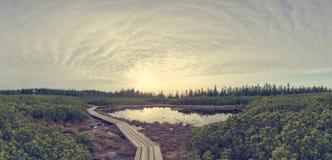 Opinión espectacular de la puesta del sol de un lago rodeado por los humedales imagenes de archivo