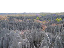 Opinión grande sobre el Tsingy Imagen de archivo libre de regalías
