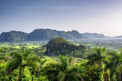 Opinión hermosa de la mañana de campos, de árboles y de mogotes verdes en el valle Cuba de Vinales fotografía de archivo libre de regalías