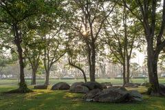 Opinión hermosa de la mañana en parque público Foto de archivo