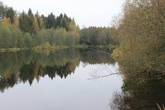 Opinión hermosa del lago Fotografía de archivo