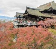 Opinión hermosa del otoño de la arquitectura de madera antigua en Kiyomizu Imagenes de archivo