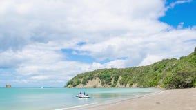 Opinión hermosa del paisaje del parque regional de Mahurangi en Auckland, Nueva Zelanda almacen de video