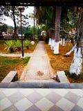 Opinión hermosa del parque y alrededor de árboles imagenes de archivo