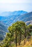 Opinión Himachal Pradesh de las colinas de Dagshai imagen de archivo