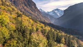 Opinión 4k aéreo de Autumn Colours Swiss Mountain Valley almacen de metraje de vídeo