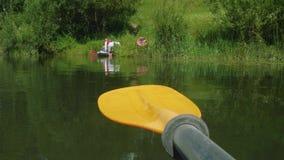 Opinión la espátula en centro y la gente en el banco del río que consigue listo para elaborar en la canoa almacen de metraje de vídeo