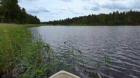 Opinión la gaviota que nada lejos Opinión hermosa del paisaje del lago y de foresttrees verdes el día de verano almacen de metraje de vídeo