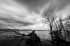 Opinión larga de la exposición de un lago, con perfectamente aún agua, skelet Imagenes de archivo