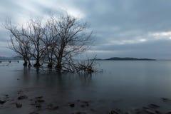 Opinión larga de la exposición de un lago en la oscuridad, con perfectamente aún agua Imágenes de archivo libres de regalías