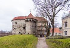 Opinión Margaret Tower gorda en Tallinn Foto de archivo libre de regalías