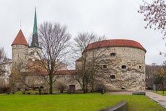 Opinión Margaret Tower gorda en Tallinn Imagen de archivo