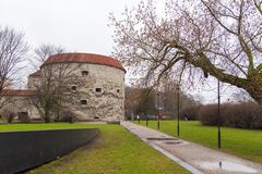 Opinión Margaret Tower gorda en Tallinn Fotos de archivo libres de regalías
