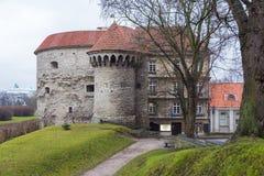 Opinión Margaret Tower gorda en Tallinn Fotografía de archivo