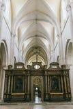 Opinión medieval de la catedral dentro Fotografía de archivo