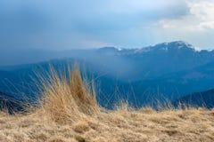 Opinión natural del paisaje montañas e hierba, fondo hermoso para los diseños y tarjetas Paisaje temprano de la primavera de la h fotos de archivo